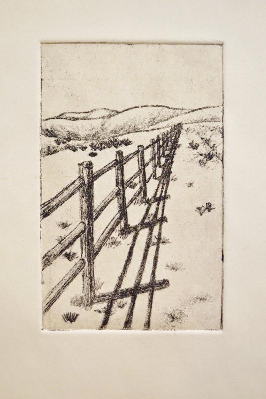 fencefixed (534x800).jpg