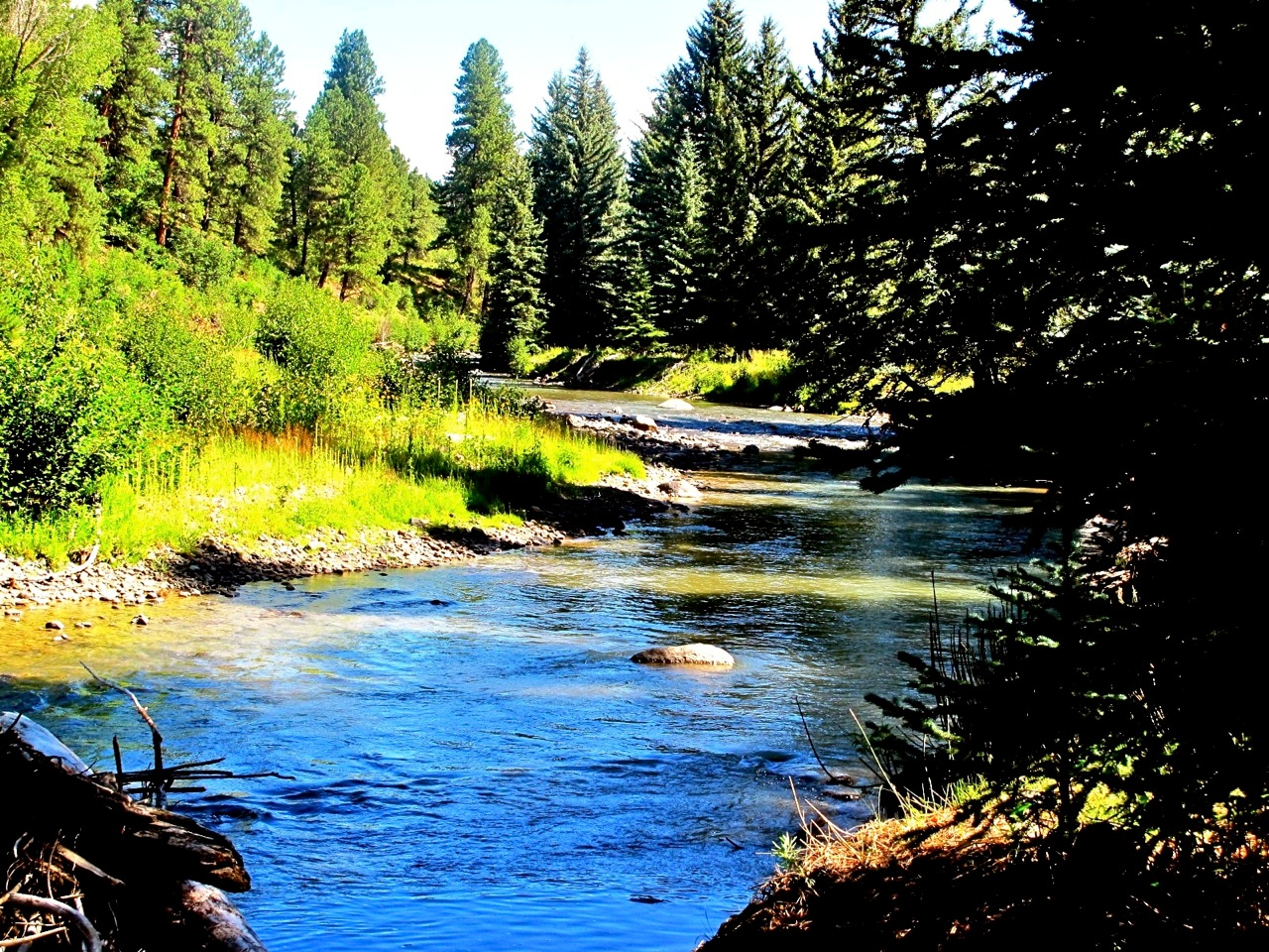 Pagosa Springs property for sale