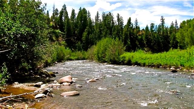 Colorado property for sale