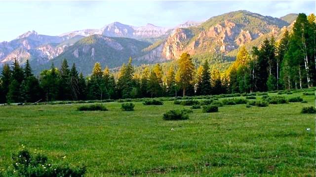 Navajo Mountain Property