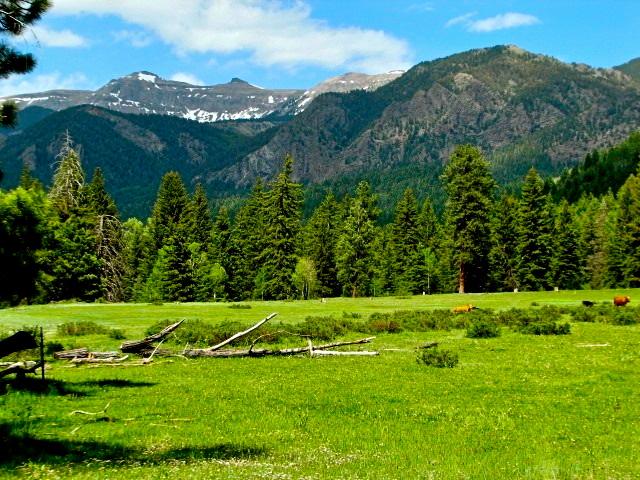 Colorado Mountain Land