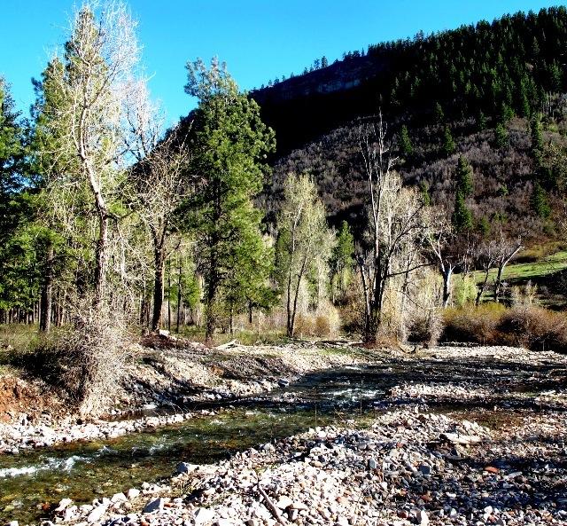 Durango Mountain Property