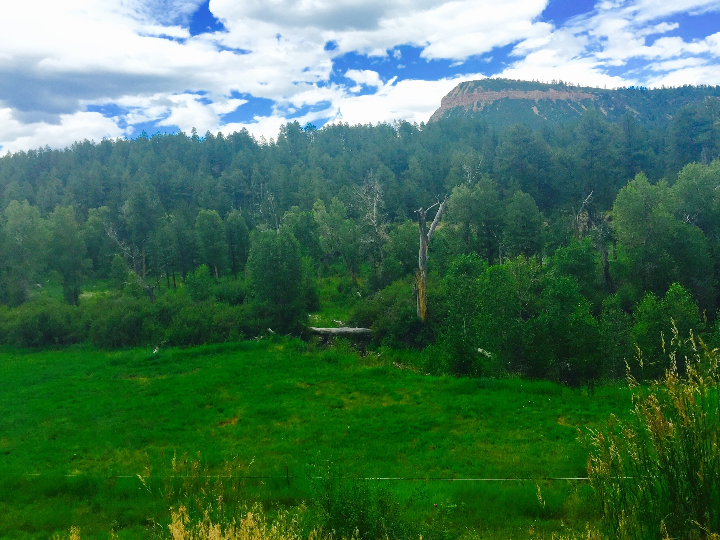 Land for sale in Durango, CO