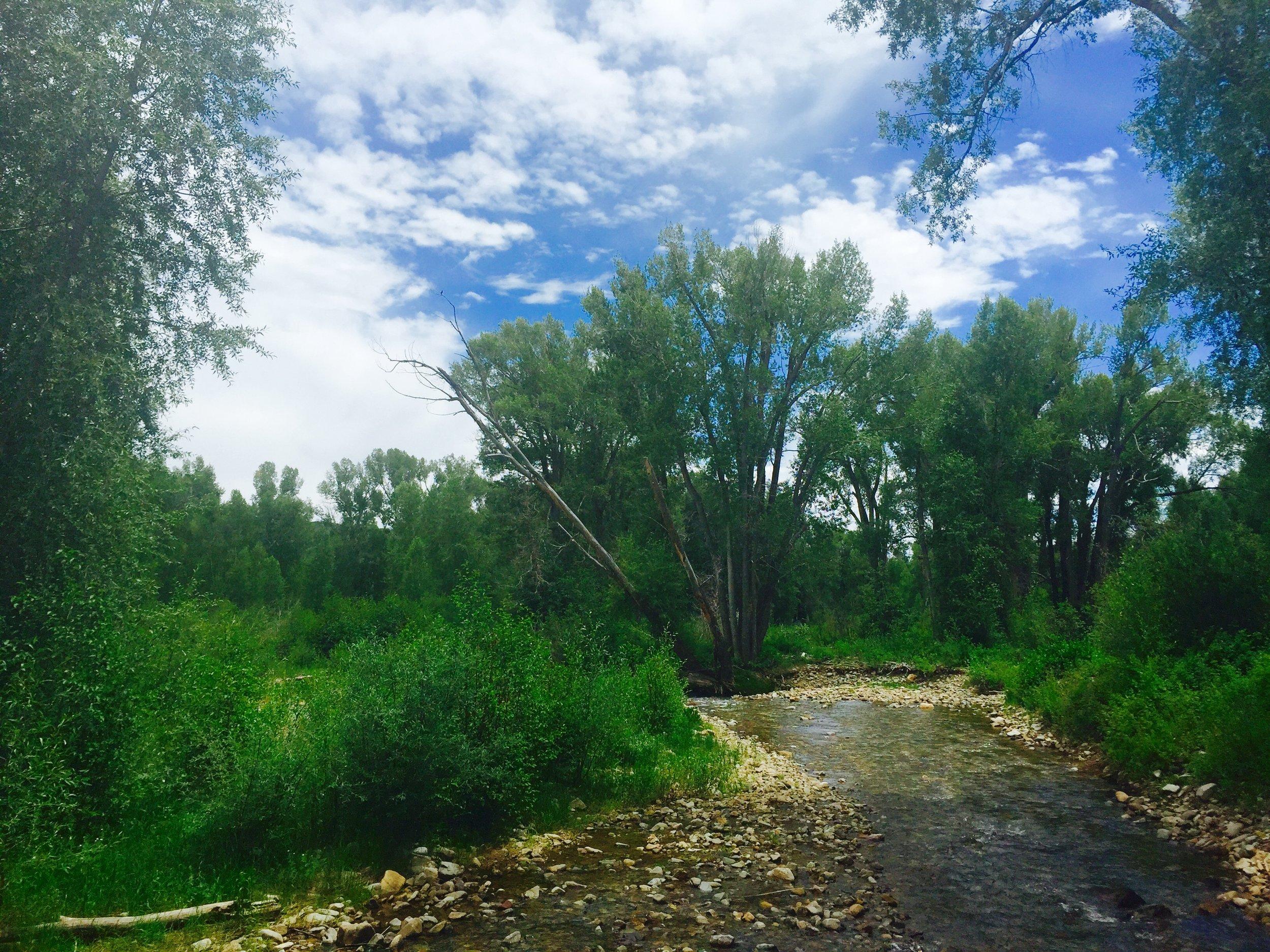 Colorado land with river