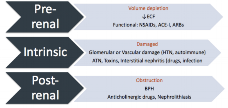 A summary of the 3 main causes of AKI. See if you can match up the components of VOID RIGHT with these categories! (Also, ECF = extracellular fluid)