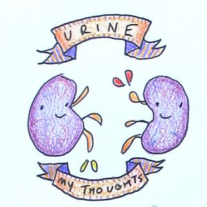 Aw, aren't your kidneys thoughtful? Return the favor! ( Image )