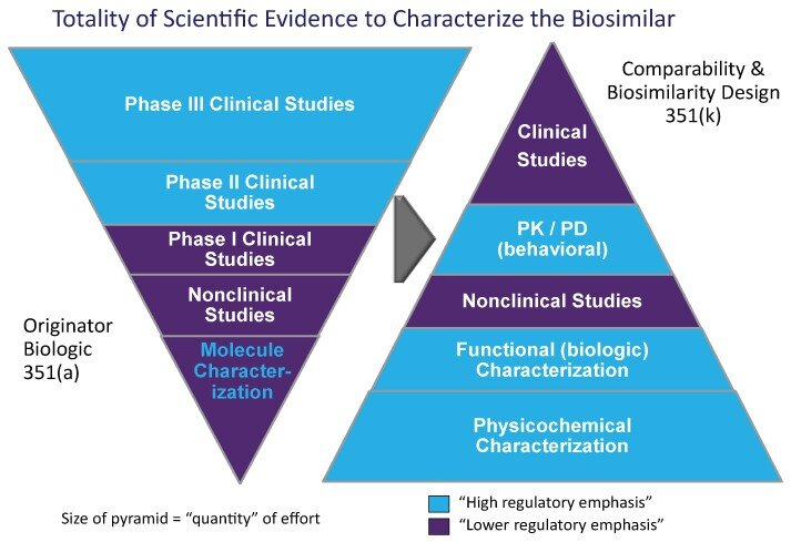Notice how much weight is placed on Clinical Studies for a biologic (reference product)…compared to how much weight is placed on Clinical Studies for biosimilars. ( Image )