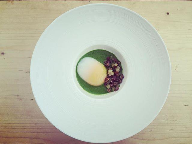 Third course: turnip and radish top purée, charcuterie, pickles, @rockyrunfarm 62 degree duck egg