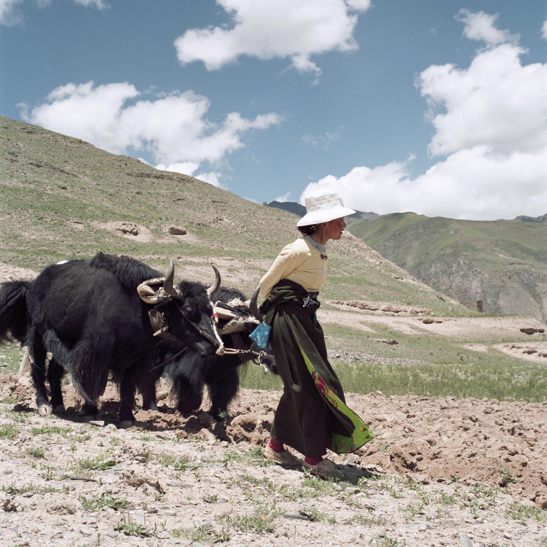 Rinchenlucy21.jpg