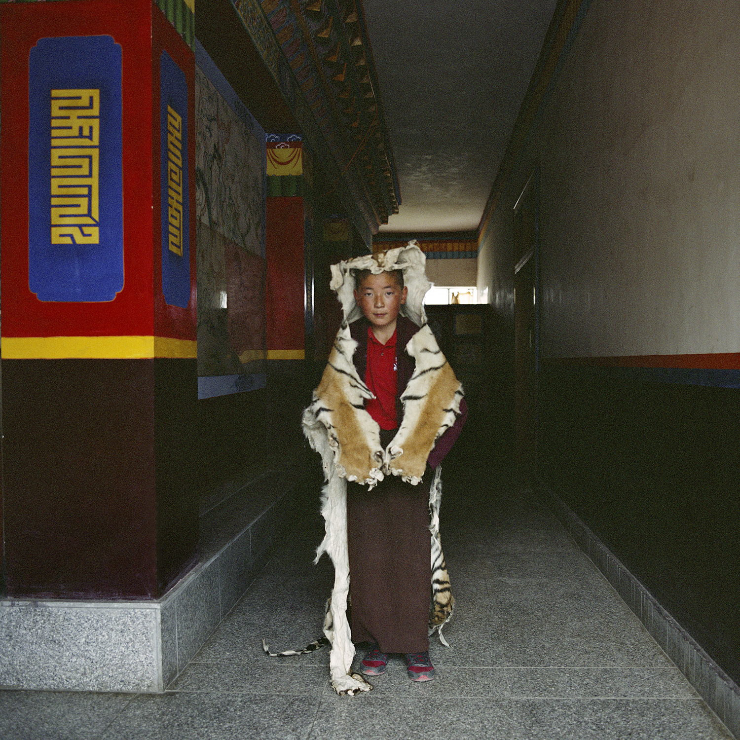 Tibet_RinchenLucy_Tiger copy.jpg