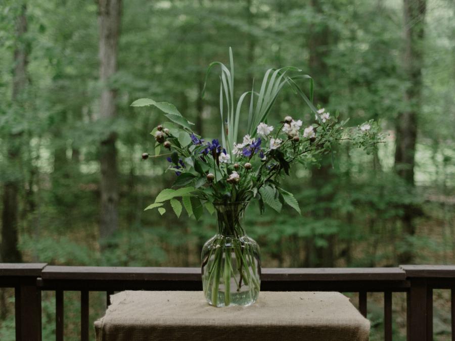 LD griffin-matt-backyard-spring-upper-delaware-river-wedding-pennsylvania-meadowlark-stills-lawrence-braun-DIGITAL-0024.jpg