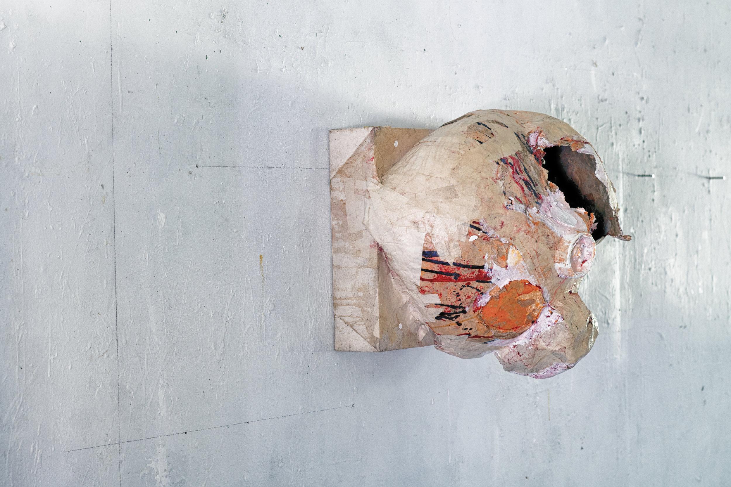 Trophy head (side view, left)