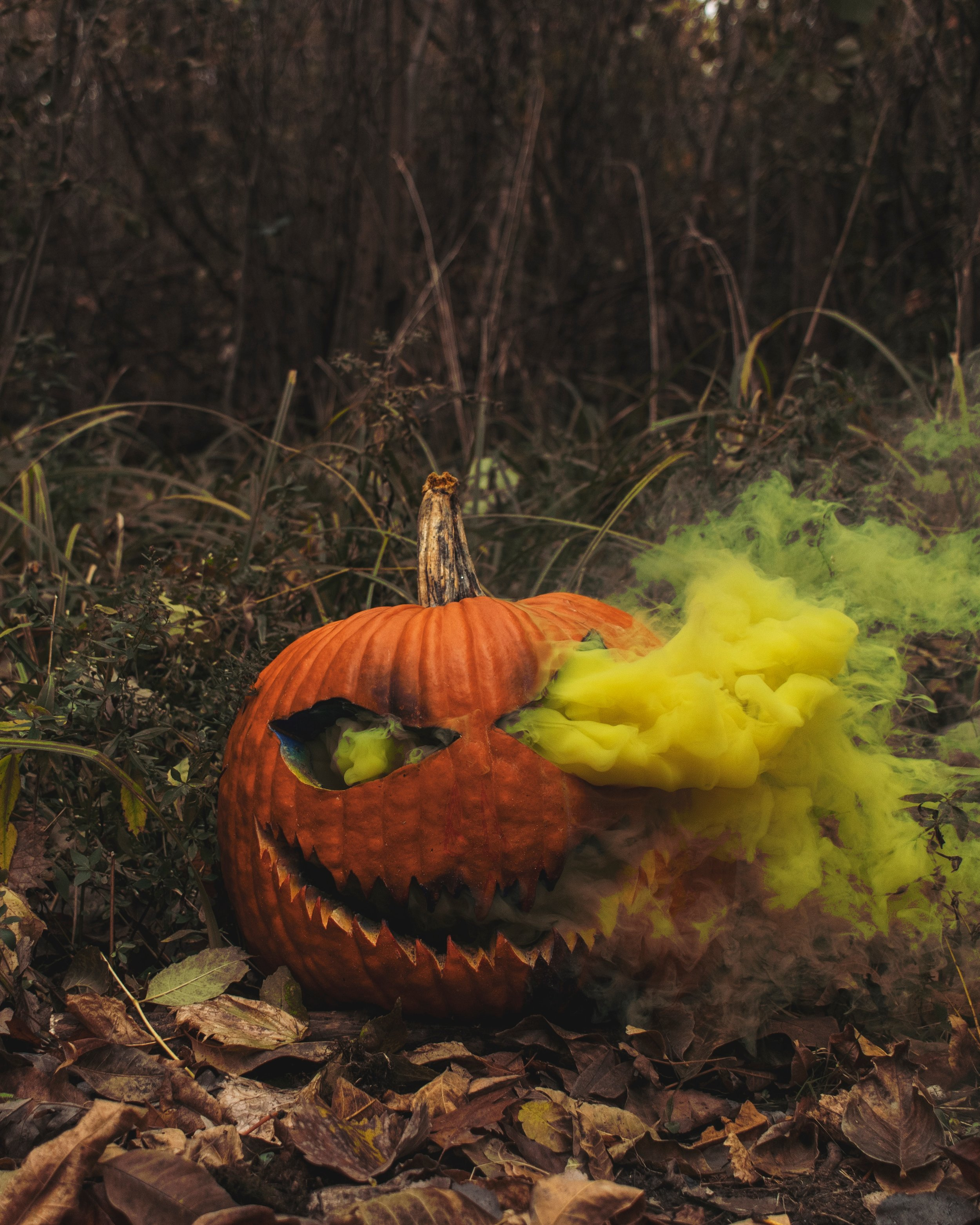 Halloween Wrap.jpg