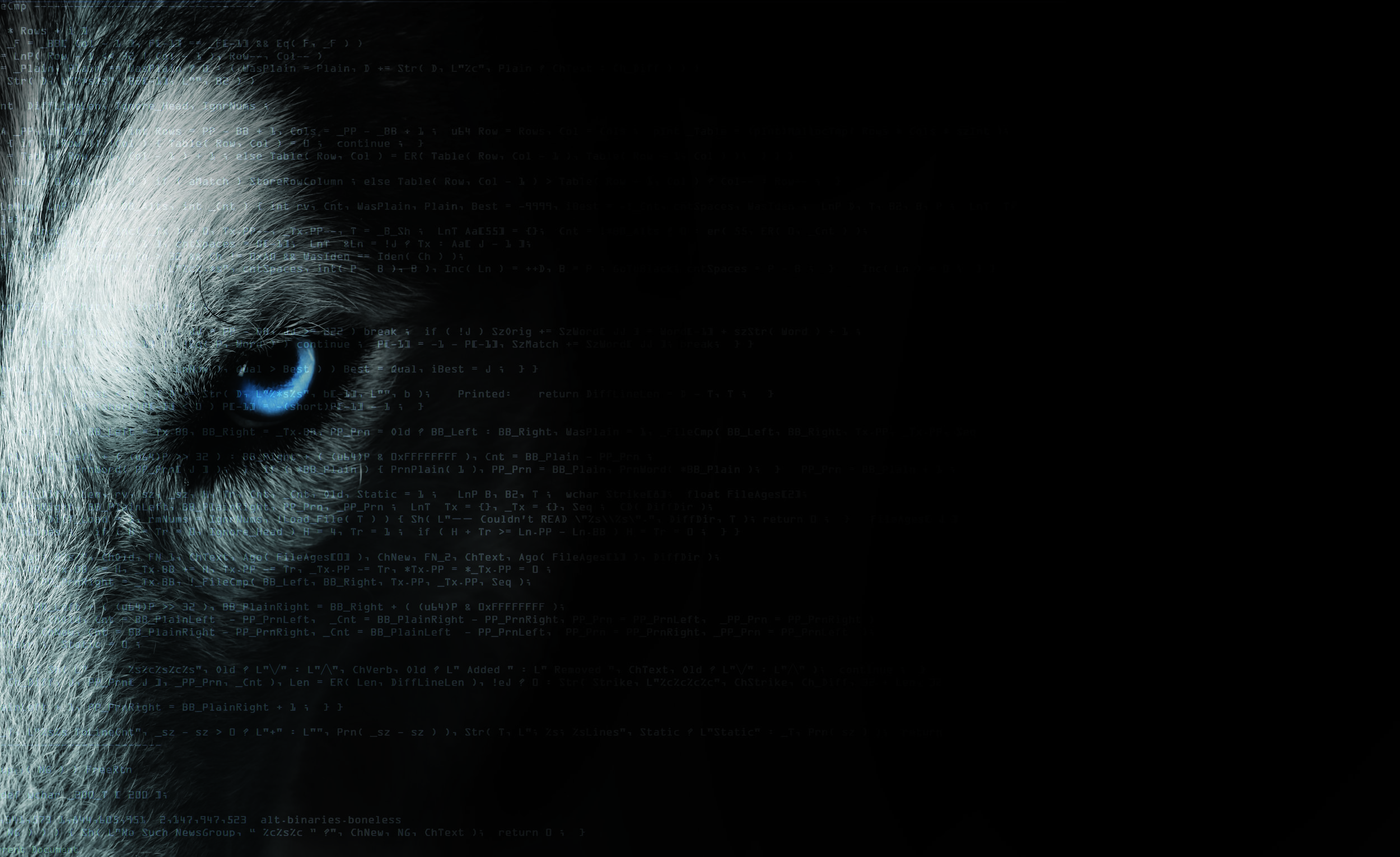 code wolf.JPG