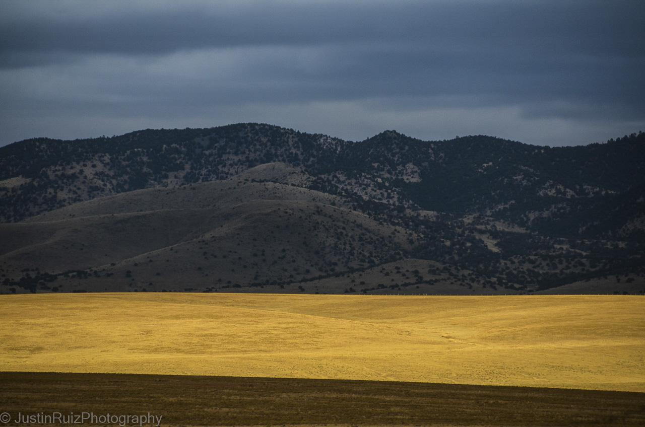 New Mexico Cibola, NP