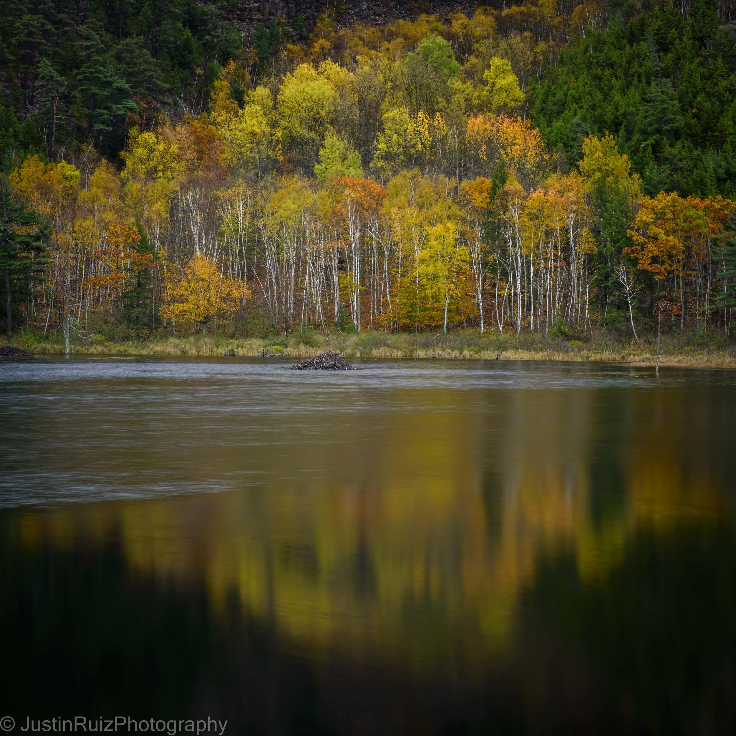 JSRPhotography_DSC5794-Acadia NP_FB.jpg