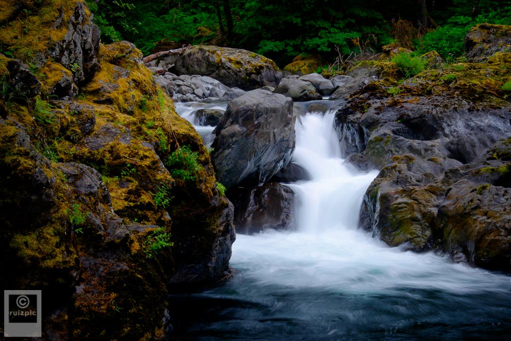 JustinRuizPhotography_DSF0354_20150711 - Sol Duc River Salmon Cascade.JPG