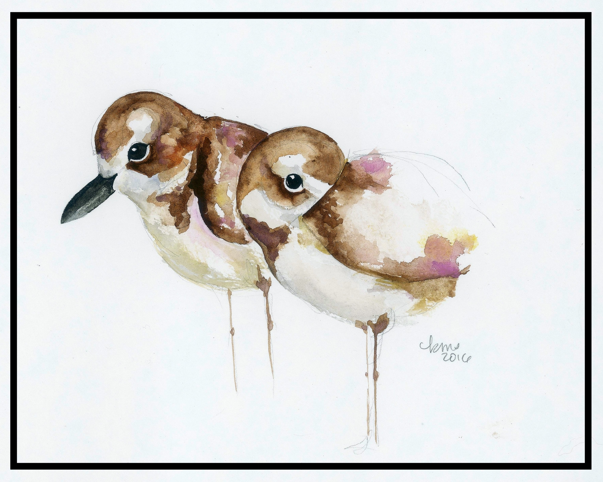 """Snowy plover pair - Tampa bay watch  The Snowy Plover Legacy Print was introduced in July 2018. Ten percent of the proceeds from these prints is donated to  Tampa Bay Watch , a non-profit organization dedicated to the """"protection and restoration of the Tampa Bay estuary through scientific and educational programs."""" Snowy plovers are listed in Florida as a Threatened species and require extra help to maintain their populations. Tampa Bay Watch's mission is to protect the environment in which the plovers live."""