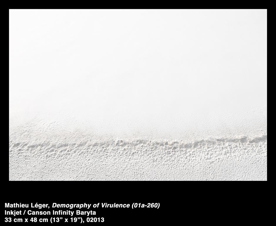 MathieuLeger2013DemographyOfVirulence01a260.jpg