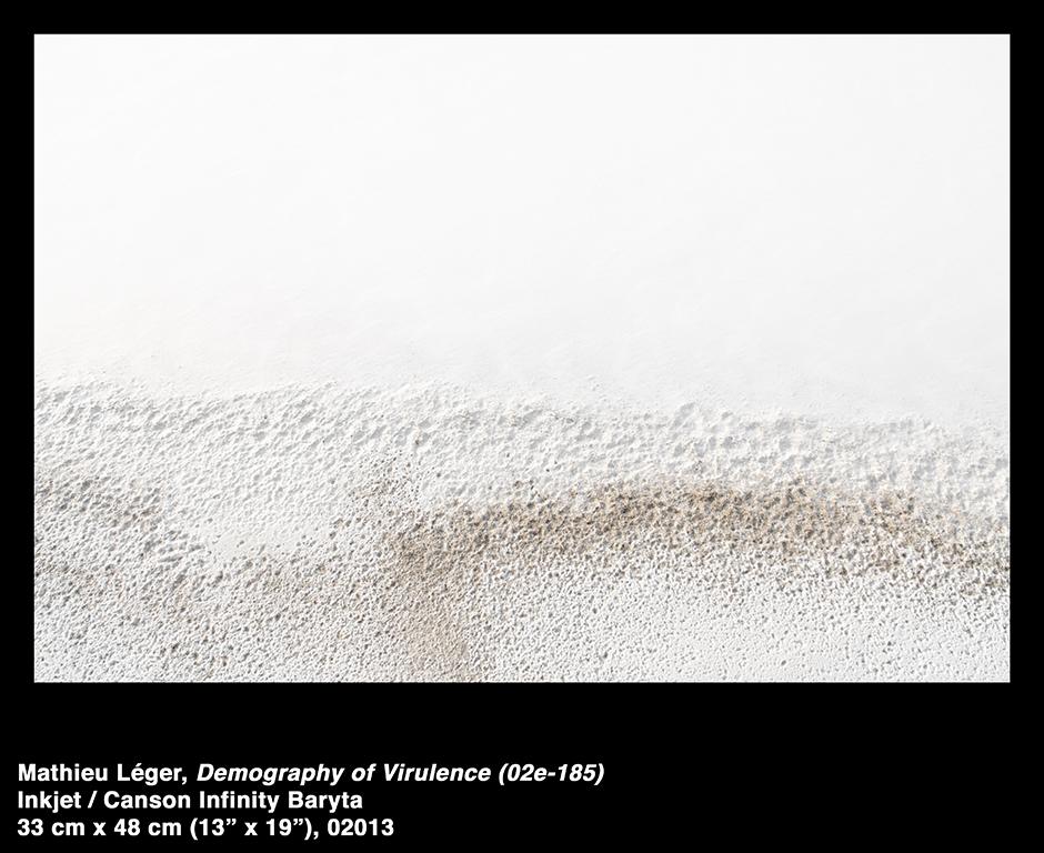 MathieuLeger2013DemographyOfVirulence02e185.jpg