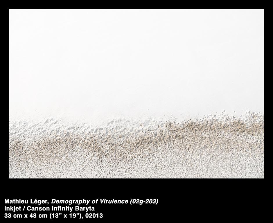 MathieuLeger2013DemographyOfVirulence02g203.jpg