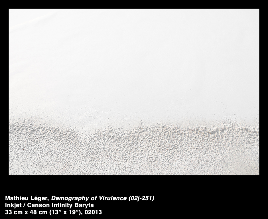 MathieuLeger2013DemographyOfVirulence02j251.jpg