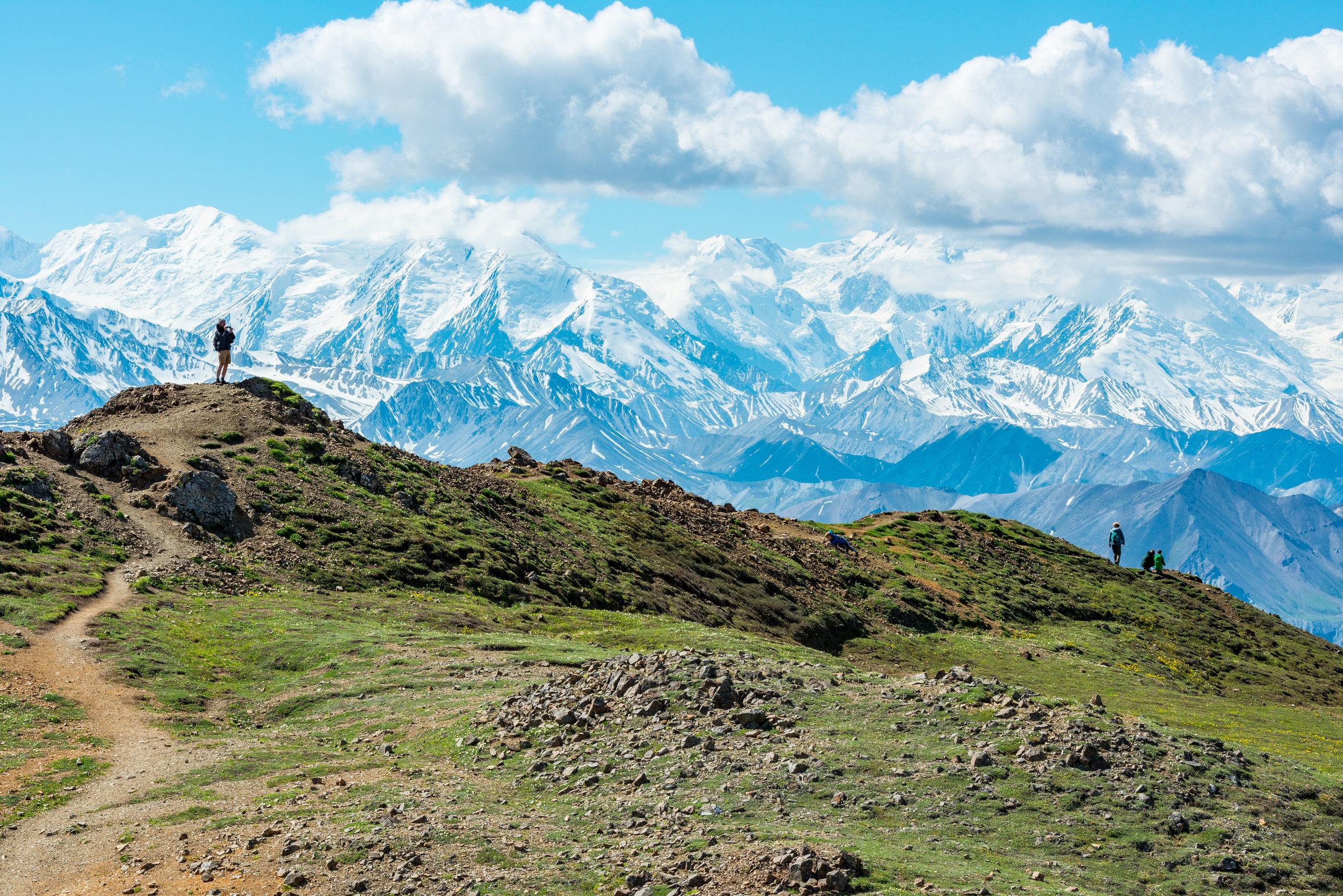 Top of the Alpine ridge overlooking Denali