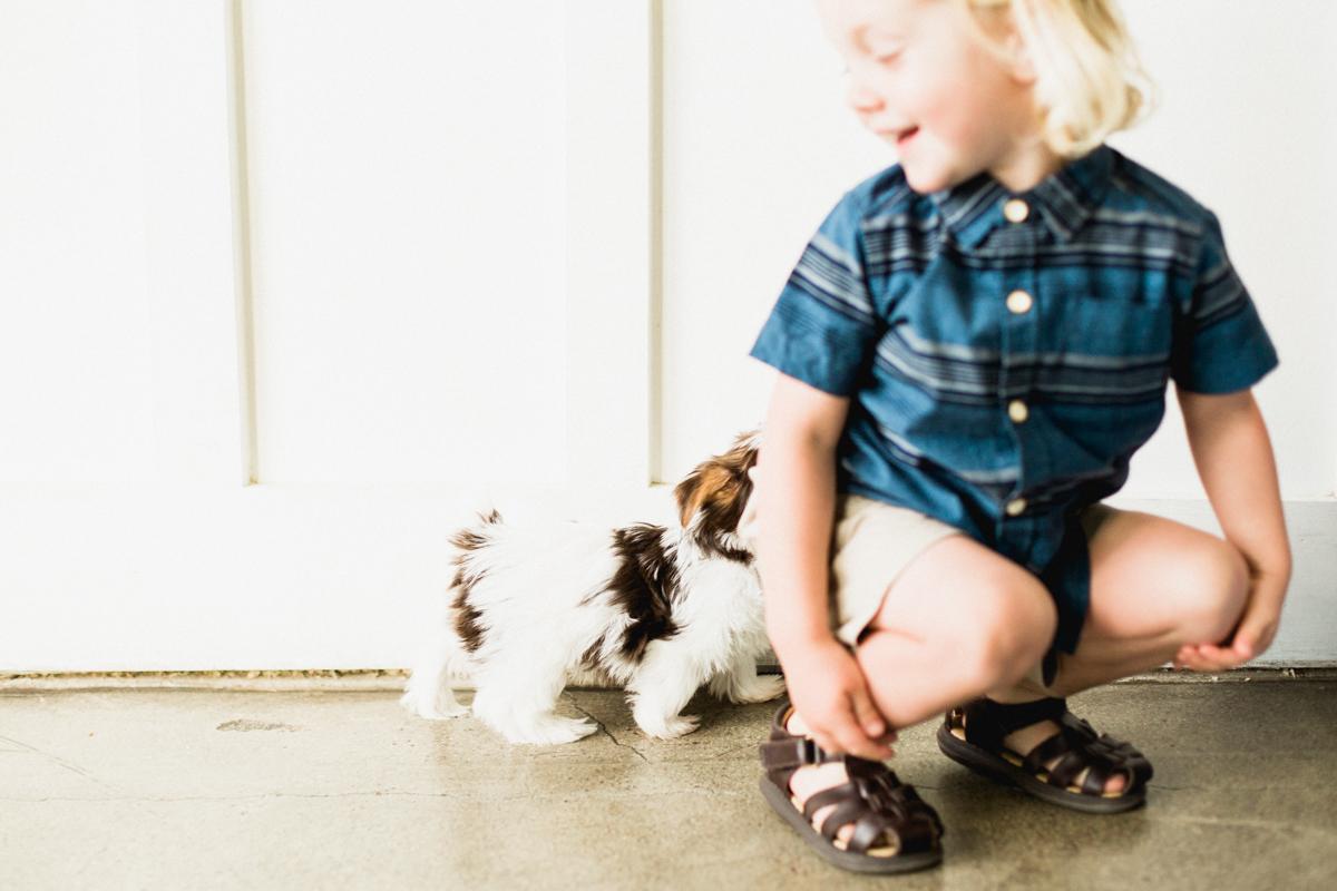 Blaine-Puppy-Birthday-19.jpg