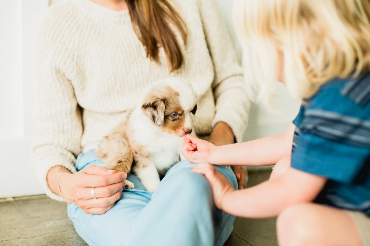 Blaine-Puppy-Birthday-52.jpg