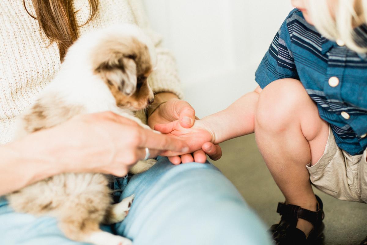 Blaine-Puppy-Birthday-58.jpg