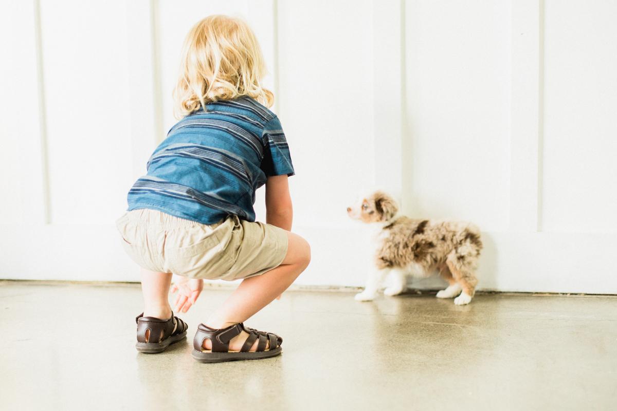 Blaine-Puppy-Birthday-77.jpg