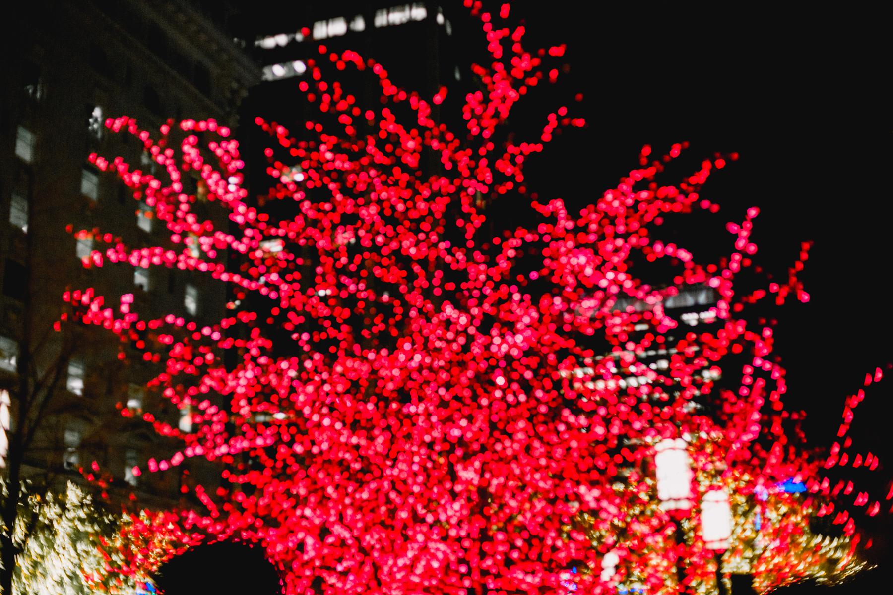 Temple-Square-45.jpg