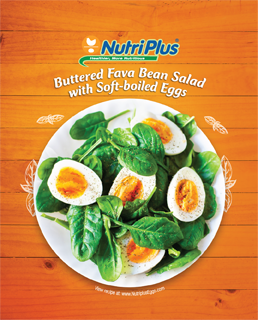 Buttered Fava Bean Salad With Soft-boiled Eggs