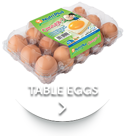 HomeBotton-tableeggs.png