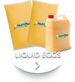 Home Nutriplus Eggs
