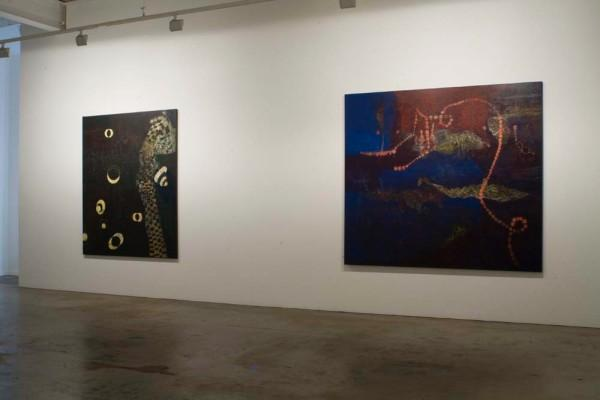 Tina Douglas | Installation view | Place Gallery, Melbourne | 2009