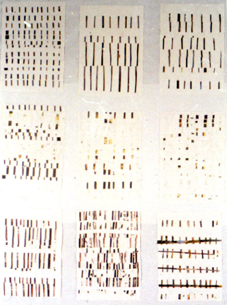 Tina Douglas | programA | 110 x 78 cm | Collage on paper | 1993