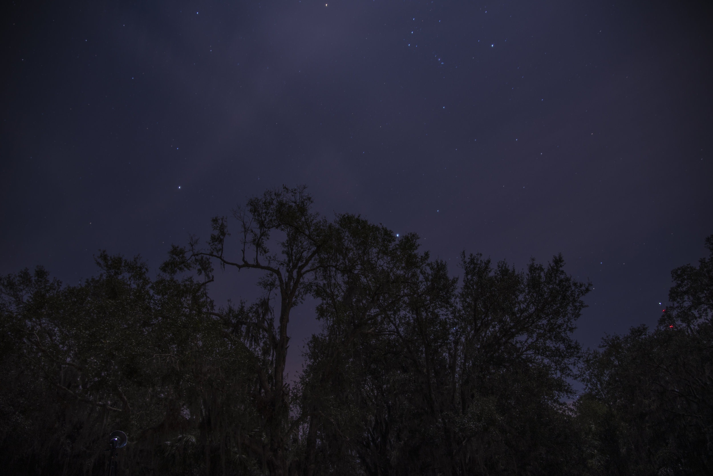 Stars-3.jpg