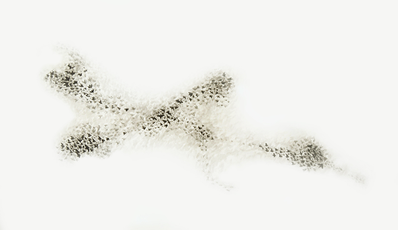 Starlings II
