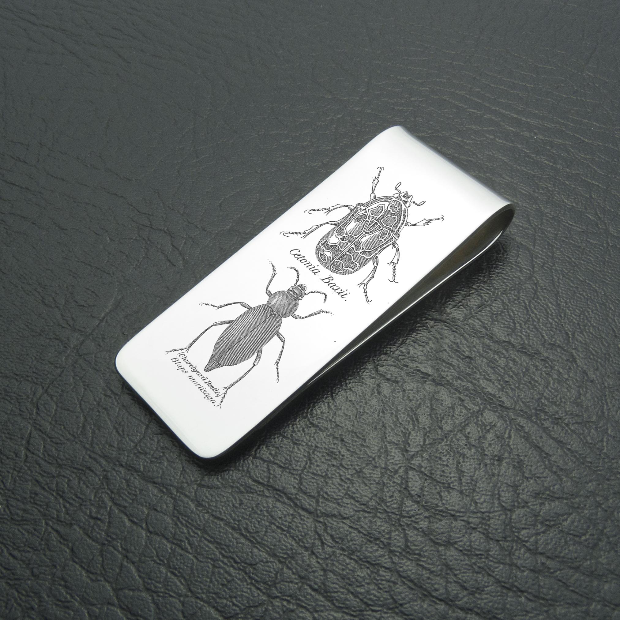 """""""Beetles"""""""
