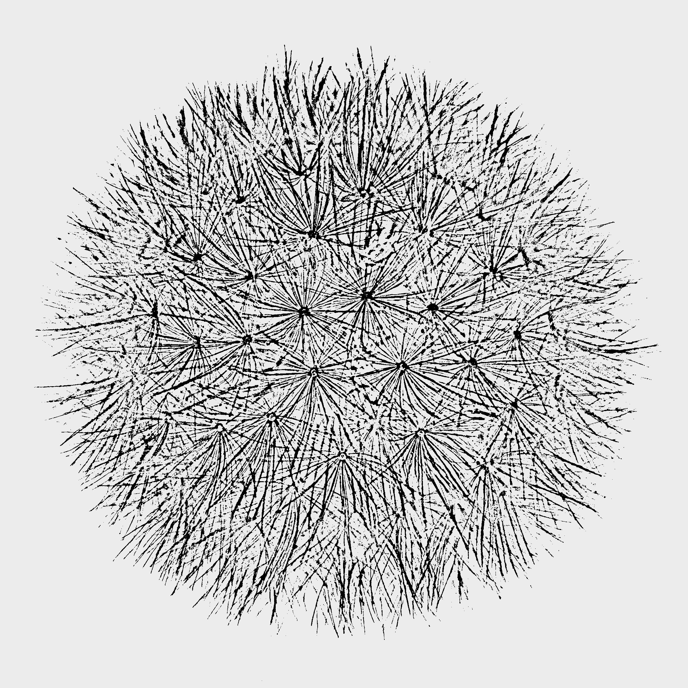 """Dandelion Clock"" design - Prototype"