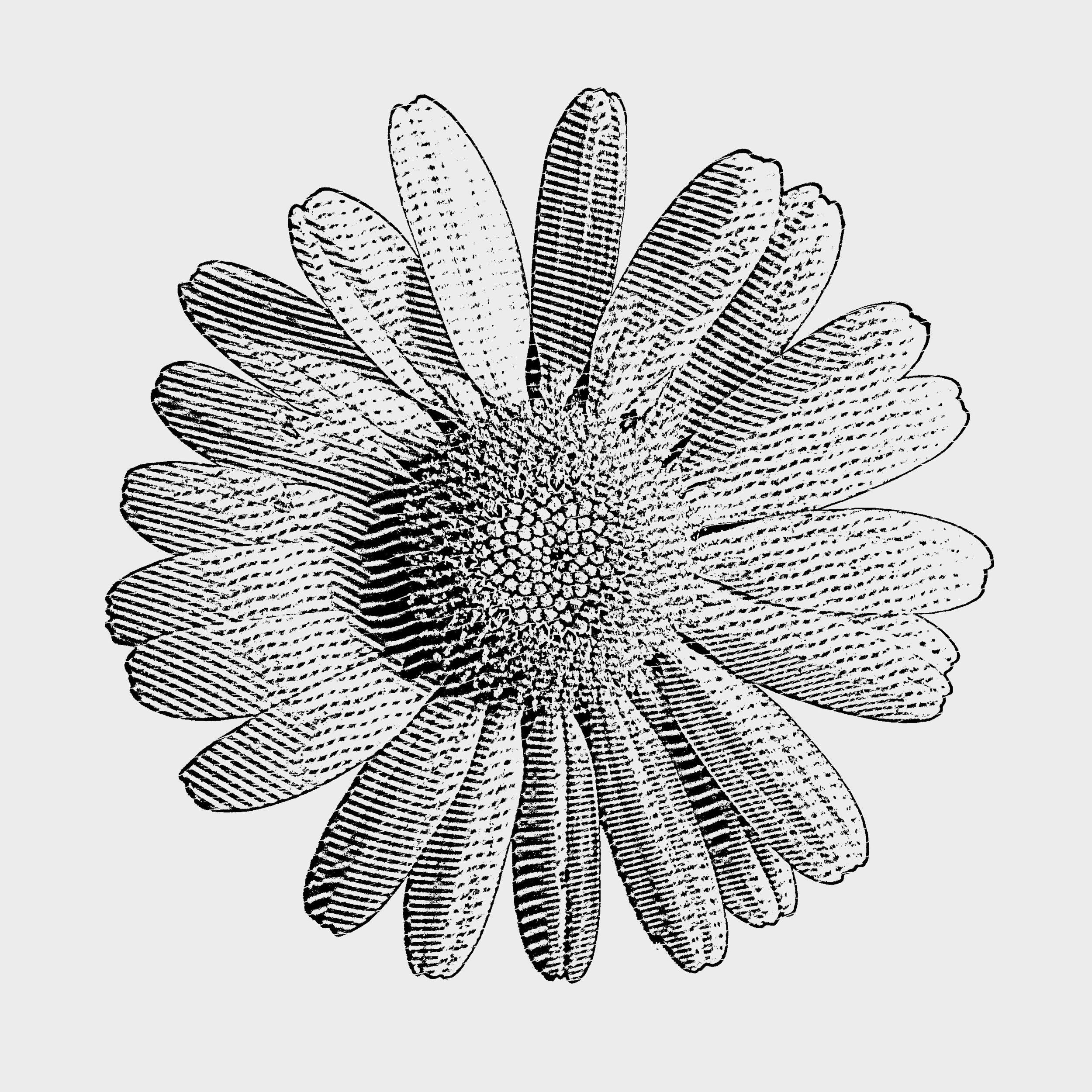 """""""Shasta Daisy"""" design - Prototype"""