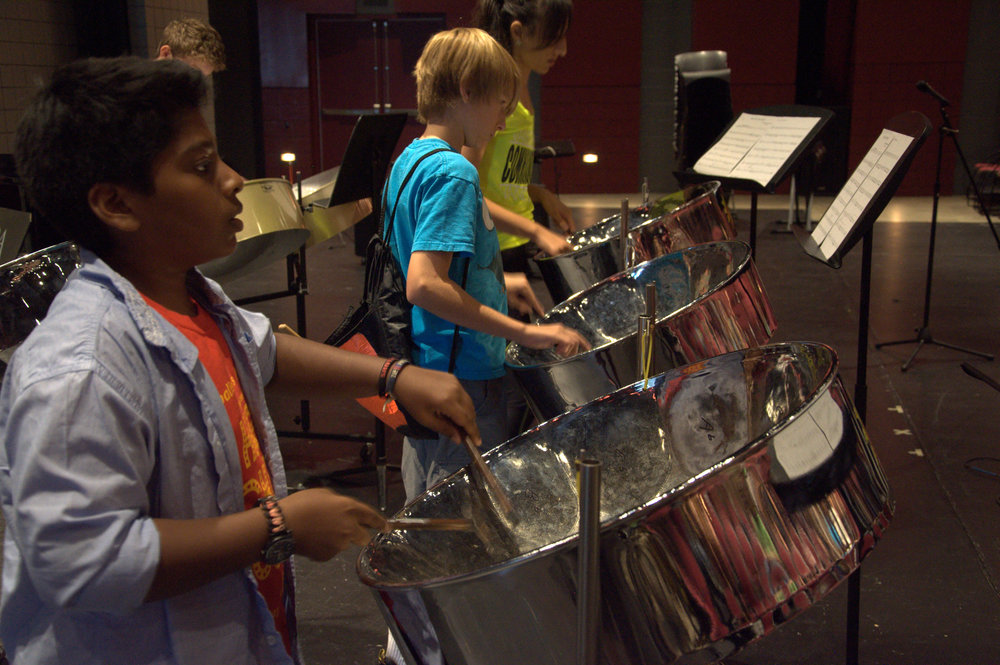 Steel Pans 1 - Brighter.jpg
