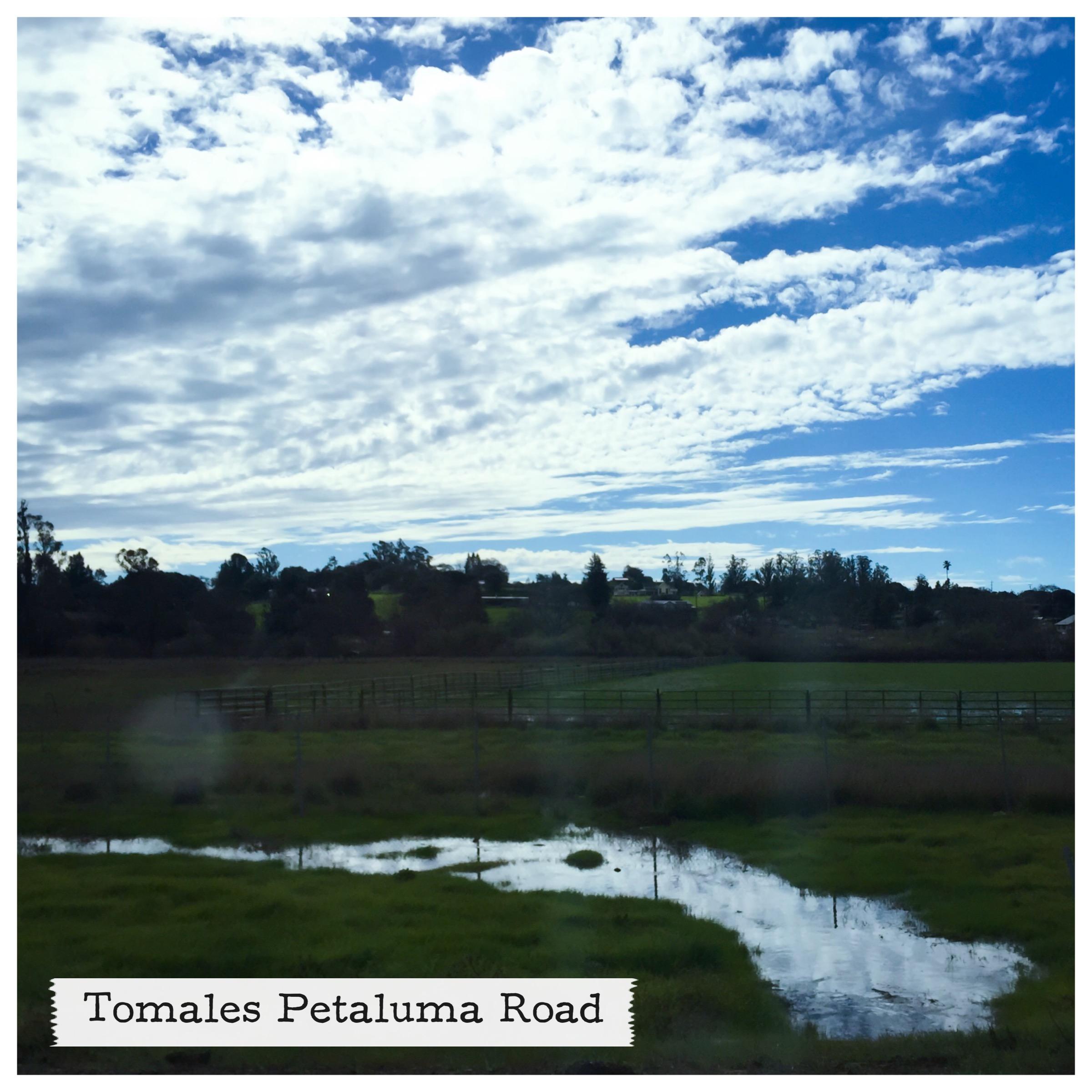 Drive east along Tomales Petaluma Road