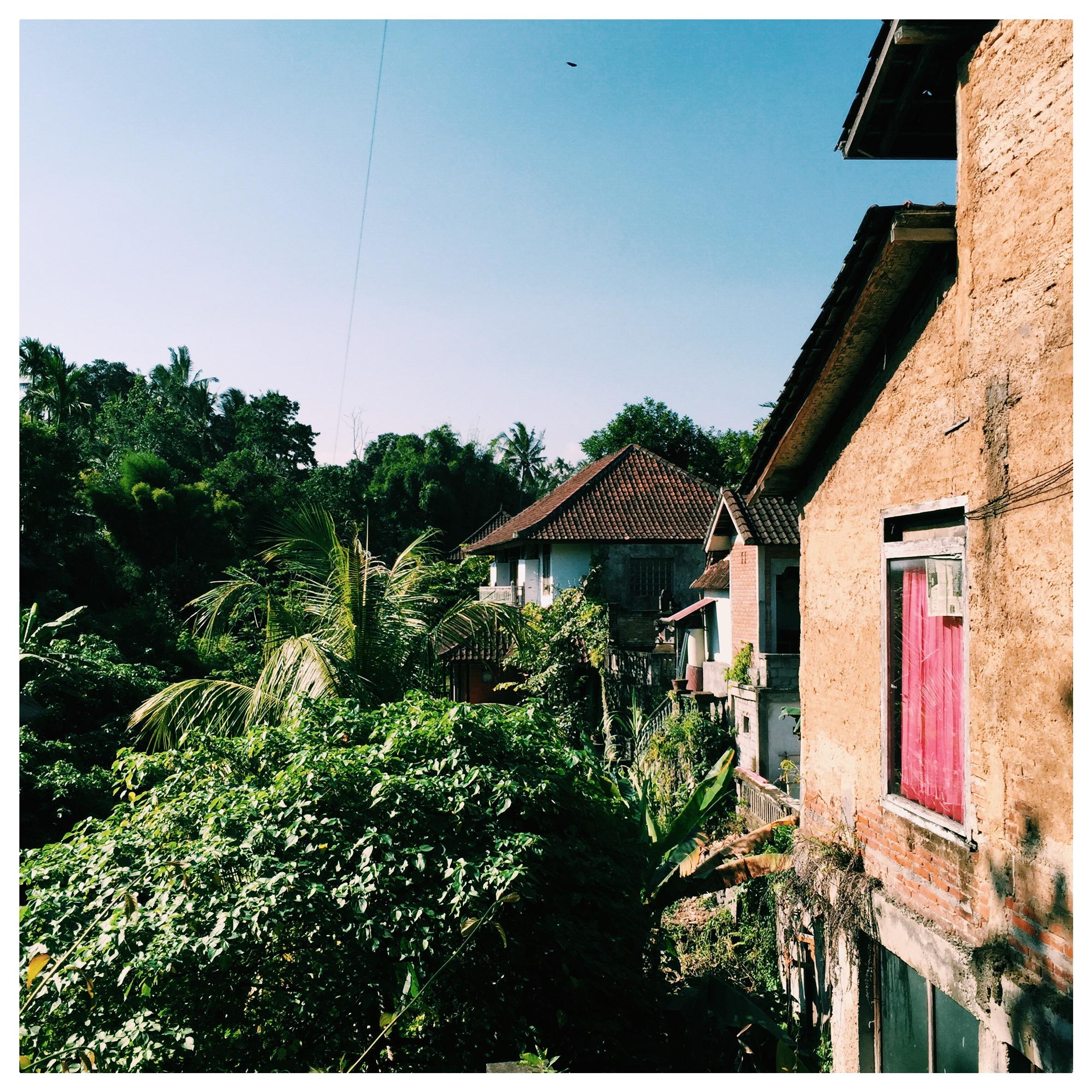 View in Ubud