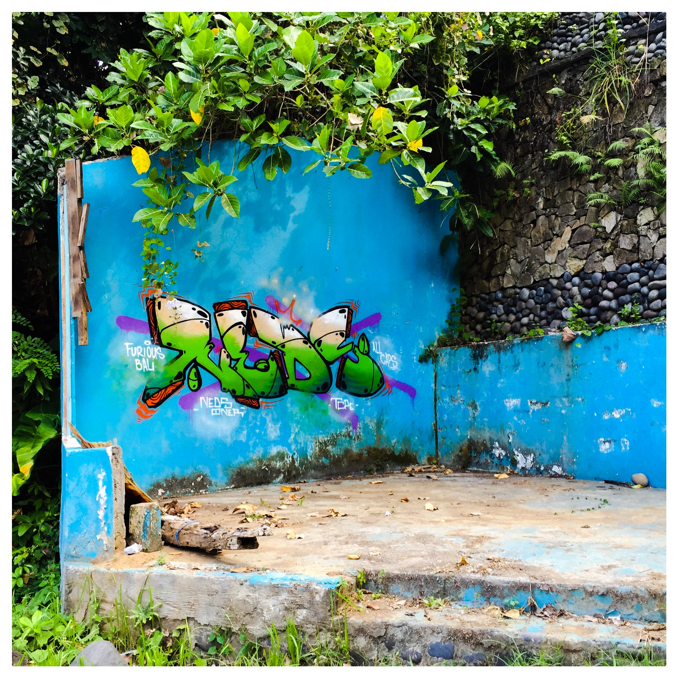 Street Art in Ubud