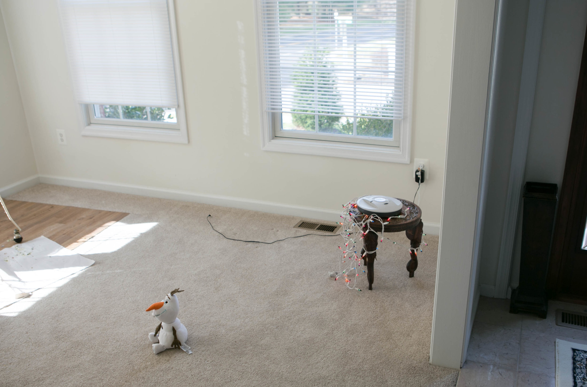 This is the room where I took the rest of the photos for this post.  Notice open blids and lots of natural light.