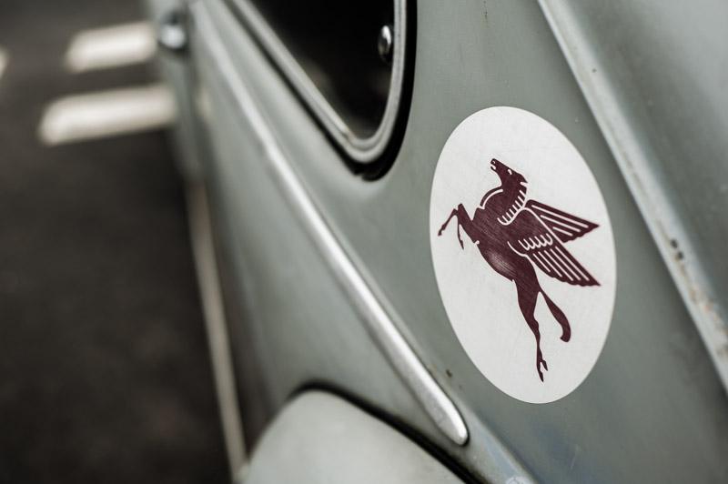 rat-look-beetle-8.jpg