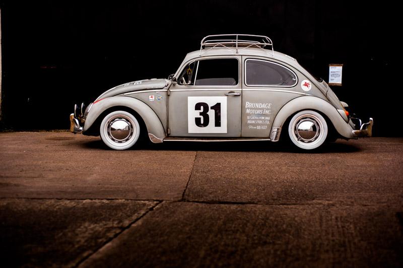 rat-look-beetle-22.jpg