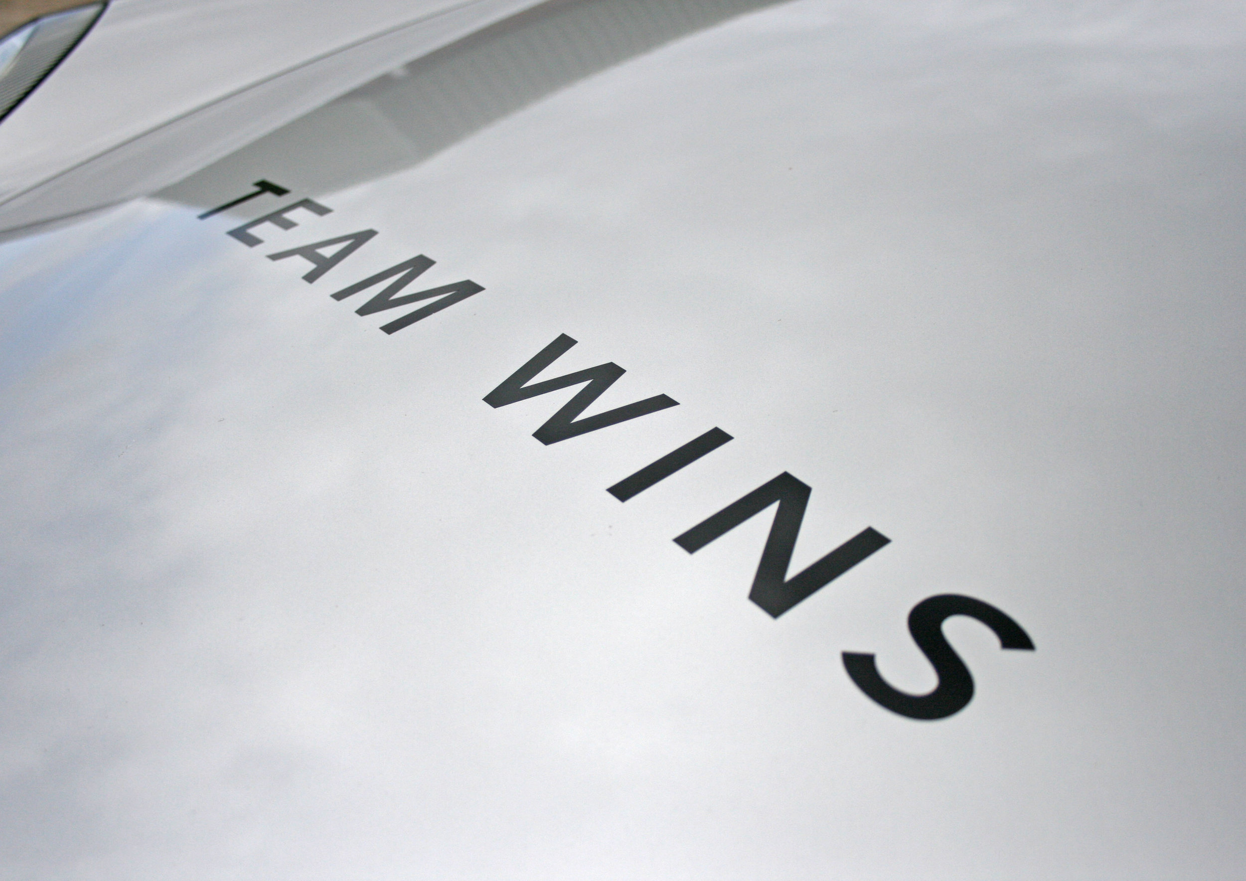 DETAIL TEAMWINS 2.jpg